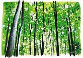 渡辺チカラのイラスト教室の教室風景・作品
